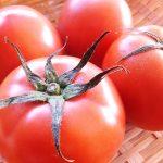 トマトの栄養価は加熱で減少?ジュースや缶詰も効果効能の成分は同じ?