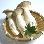 エリンギの栄養価と食べ方は?加熱や冷凍で効果や効能は変わる?