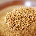 ごまの栄養成分は黒と白で違うの?(すり・ねり・いり)は栄養価に差がある?
